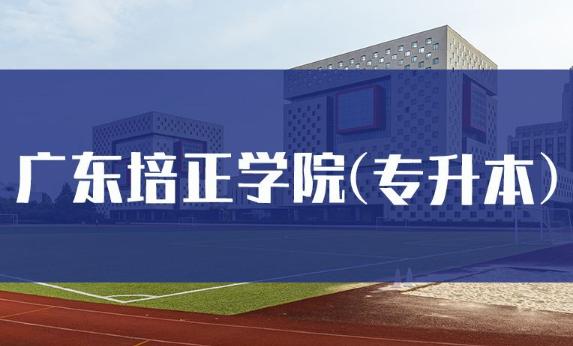 广东培正学院成考是不是只有专升本插图