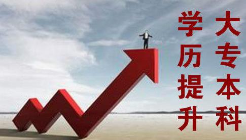 广州美术学院专升本报名条件是什么插图
