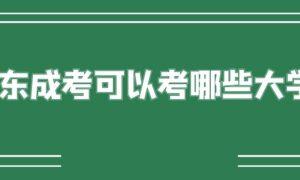 广东成考可以考哪些大学?