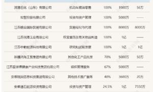"""起底28亿担保案主角华业石化:涉足10大行业,执着蹭央企,隐现神秘人""""李阳"""""""